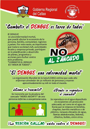 COMBATIR EL DENGUE ... ES TAREA DE TODOS