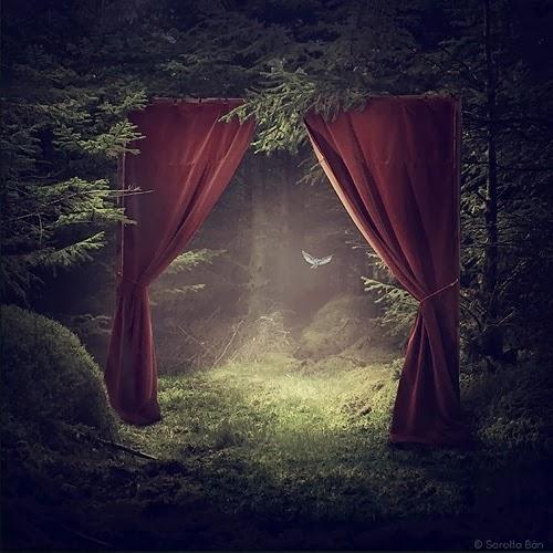 13-Surreal-Photo-Manipulation-Sarolta-Bán-www-designstack-co