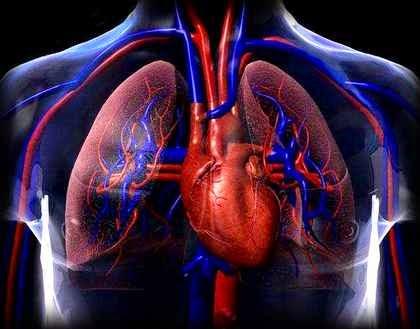 http://utility-share.blogspot.com/2014/11/kurang-tidur-dapat-menyebabkan-penyakit.html