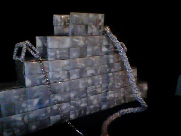 CARTERA PLATA Y BLANCO PET