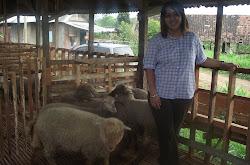 Kunjungan Peternakan Domba Merino tgl 16 Februari 2013
