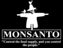 Monsanto's Net Profit Up 77%