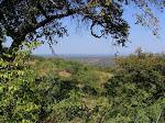 Zambezi Valley, Zimbabwe