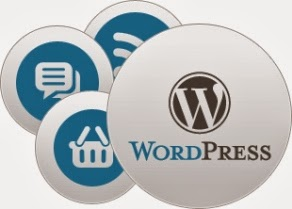 Why to have Wordpress Development Services by only Expert Developer ?