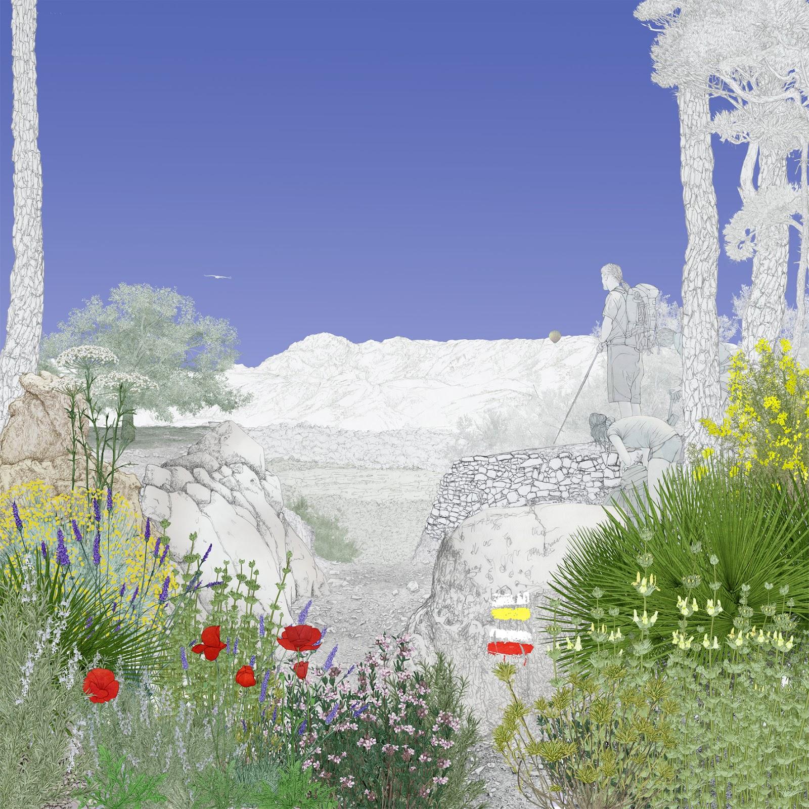 Rutas, valle, plantas olorosas, valle blanco, dibujo,