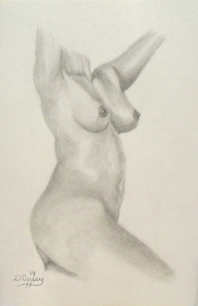 140920 - Day 20a - 30 in 30 Challenge - Graphite on paper -  Dave Casey - TheDailyPainter.jpg