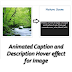 Animated Caption and Description Hover Effect for Blogger Images