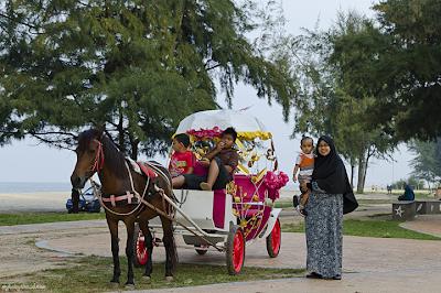 sewa kuda hias ni RM5