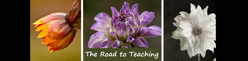 The Road to Teaching