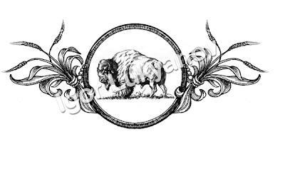 Bison bannière