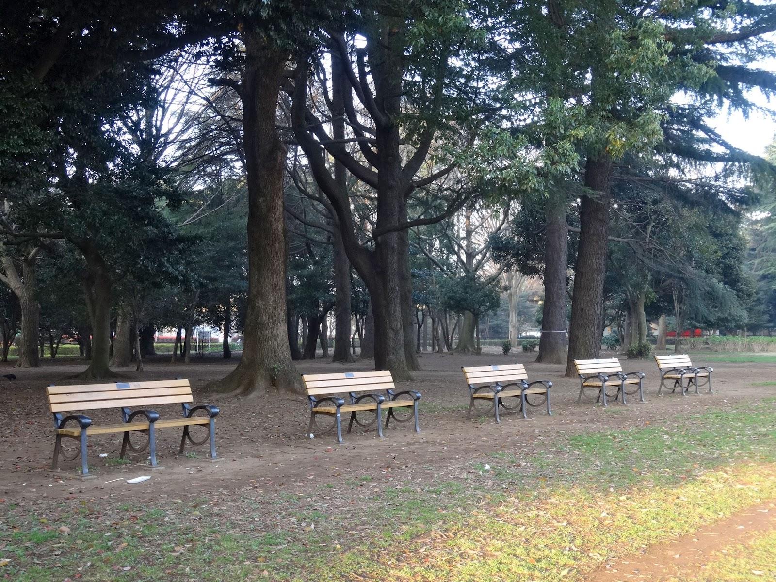 代々木公園,ベンチ〈著作権フリー画像〉Free Stock Photos