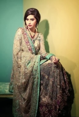 Latest Designs Of Bridal Suits 2014