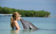 Imágenes de Niños y Delfines - Fotos de Delfines con Niños imagenes fotos de delfines en hd imagenes de ninos delfines