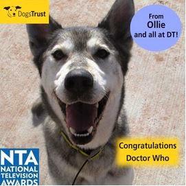 http://www.dogstrust.org.uk/rehoming/dog/1109724/ollie#.Ut_5VrTFIr0