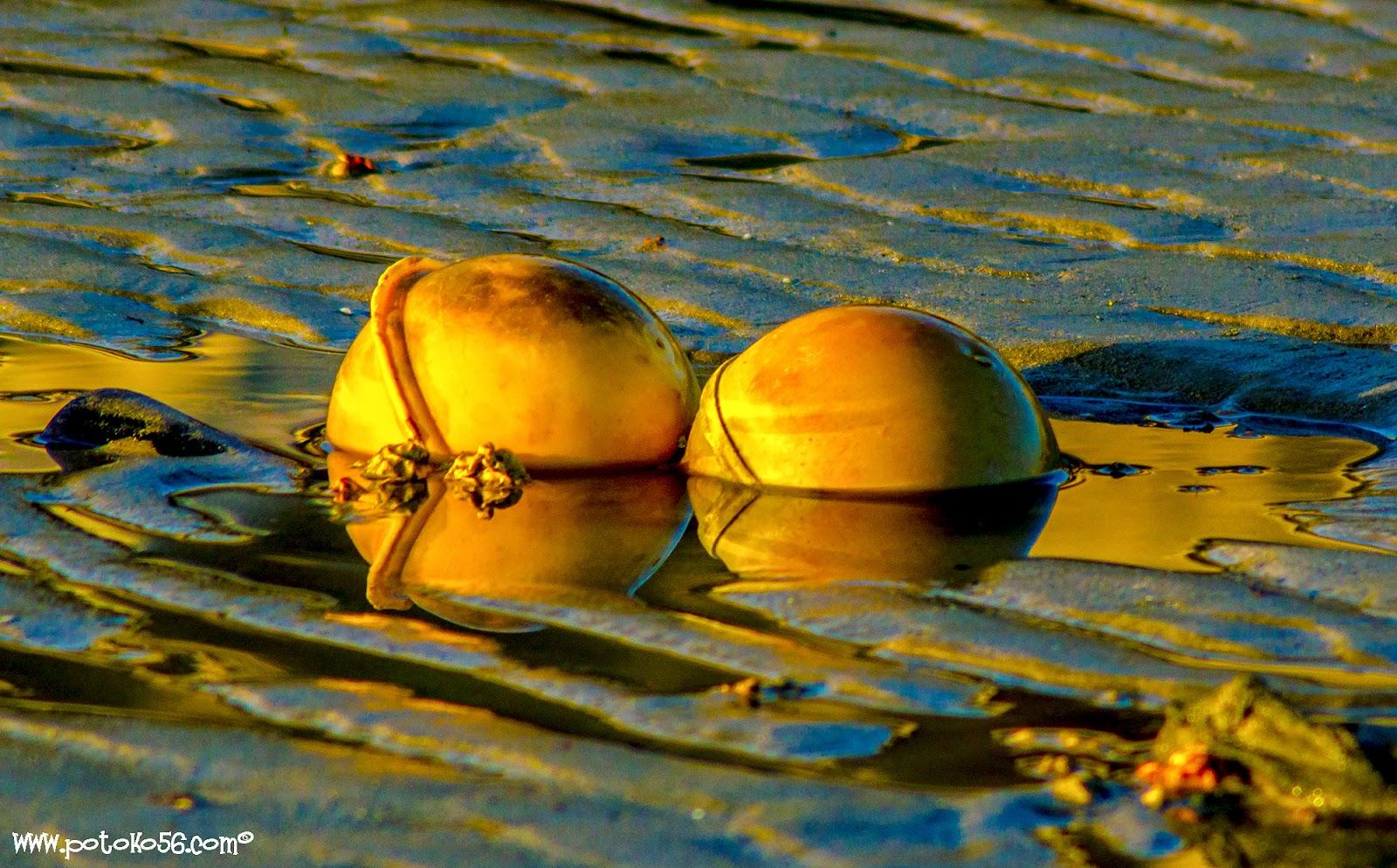 pequeñas bollas en la orilla de la playa del Chorrillo Rota