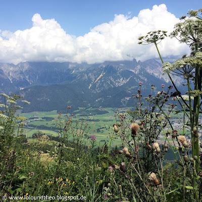 Wilde Blumen / Blumenwiese / Ausblick / Berge / Tal / Austria / Österreich / Salzburger Land