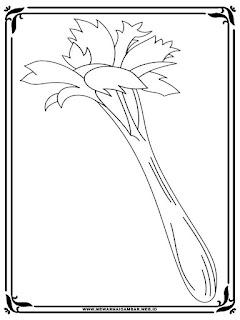 gambar sketsa seledri untuk mewarnai