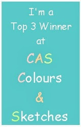 CAS - top 3 winner