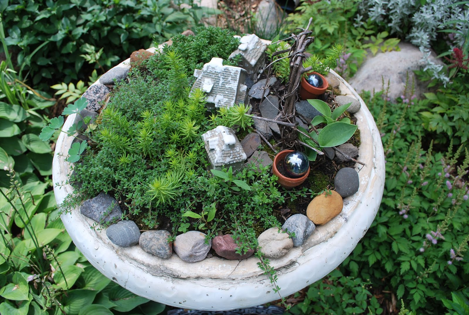 A Fairy Garden Sweetwater Style
