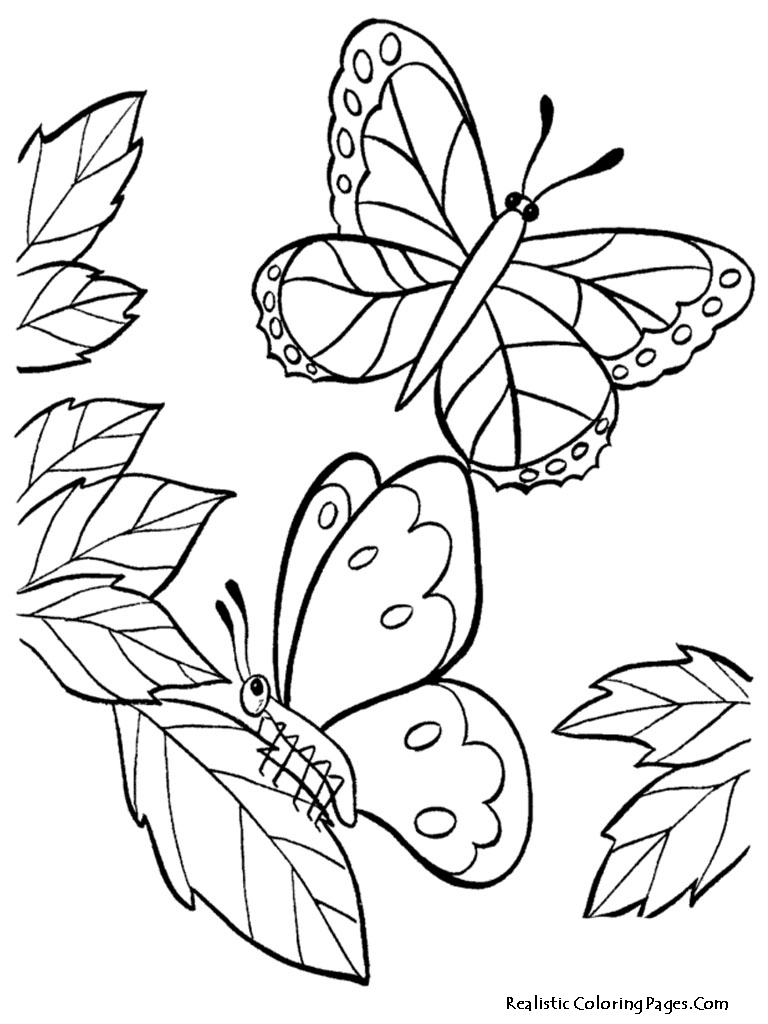 realistic butterflies coloring pages - photo#25