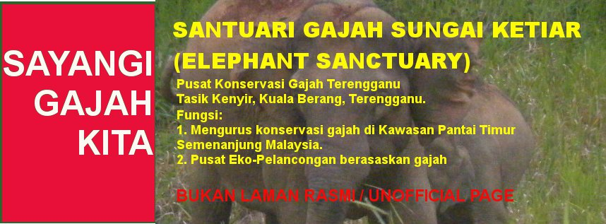 Santuari Gajah Sungai Ketiar (Elephants Sanctuary)