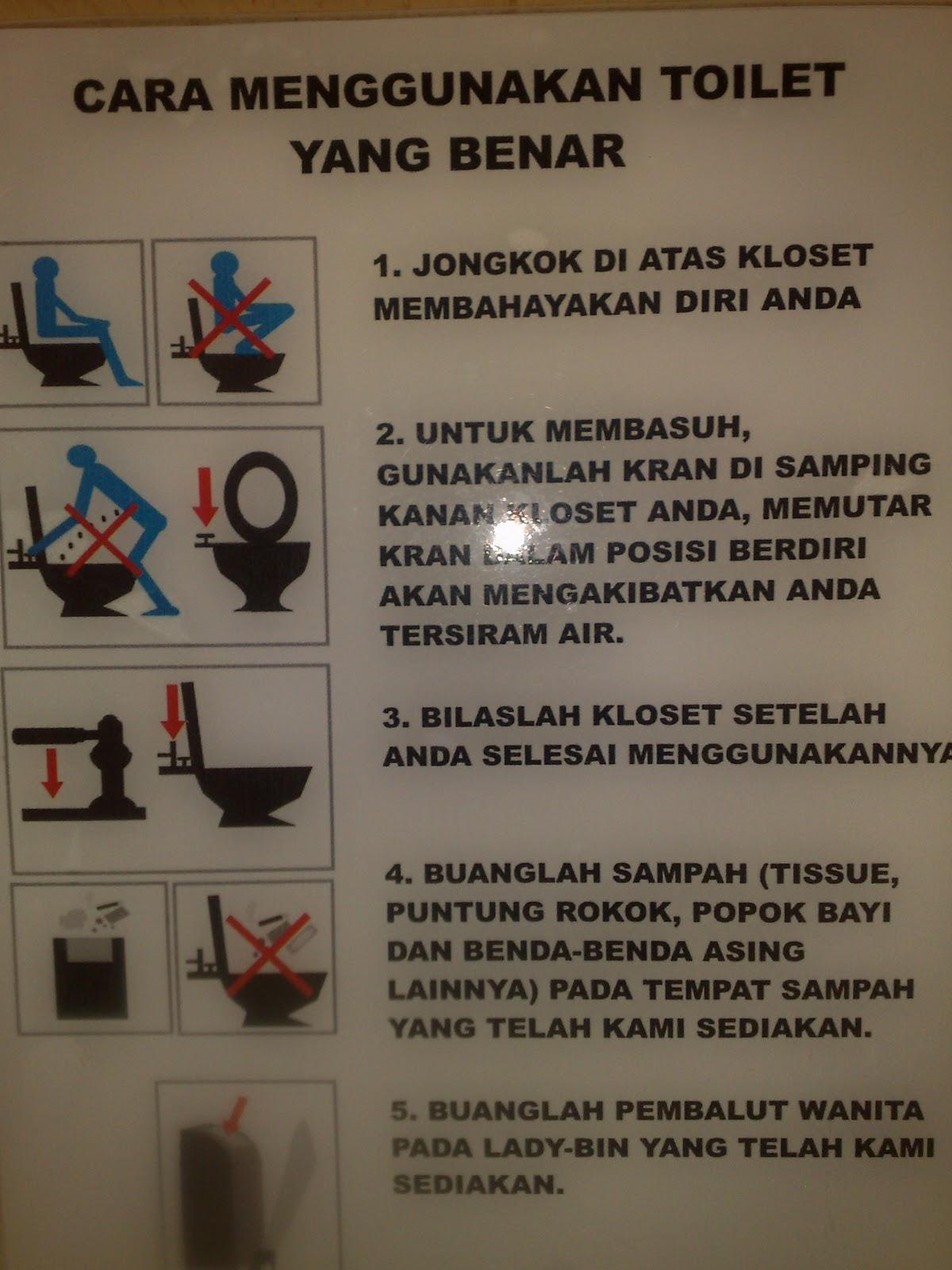 toilet duduk Cara Menggunakan Toilet Yang Benar