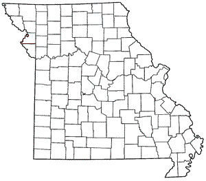 Missouri County Blank Map