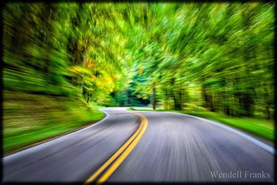 https://www.etsy.com/listing/122846666/speeding-through-the-forest-e42?ref=favs_view_2