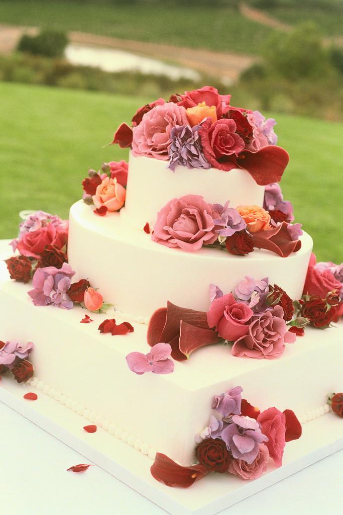 Wedding Cake Designs 2011