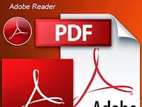 Download Adobe Reader 11.0.10