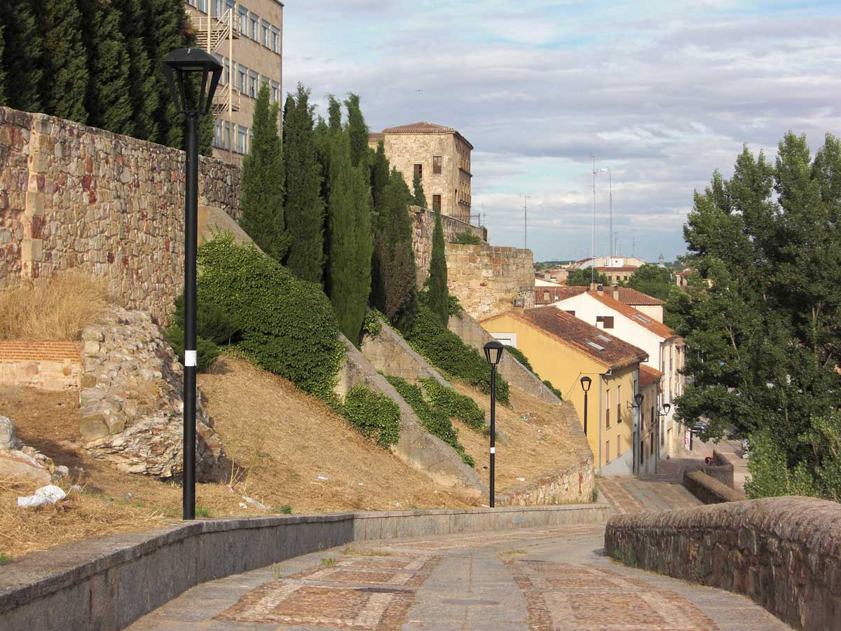 Salamanca tierra m a alc zar de san juan o castillo de for Piscina alcazar de san juan