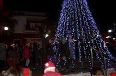 """Όχι Στα """"Παρακμιακά"""" Χριστουγεννιάτικα Δέντρα Σε Βίλλια,Ερυθρές,Οινόη Και Μάνδρα!"""