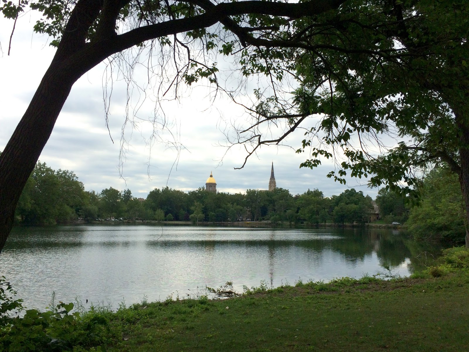 cozy birdhouse | view of the university of notre dame from across the lake
