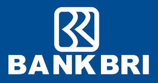 Lowongan Kerja Terbaru Auditor Bank BRI Juni 2013