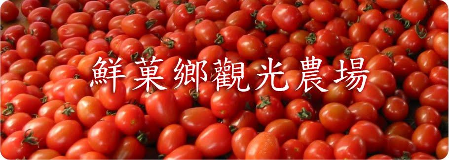 鮮菓鄉觀光農場 - 后里蕃茄園