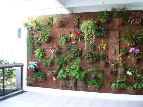 parede pode sim receber sua coleção de plantas;