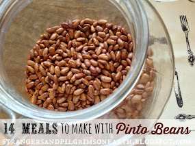 14+ Meals to Make with Pinto Beans
