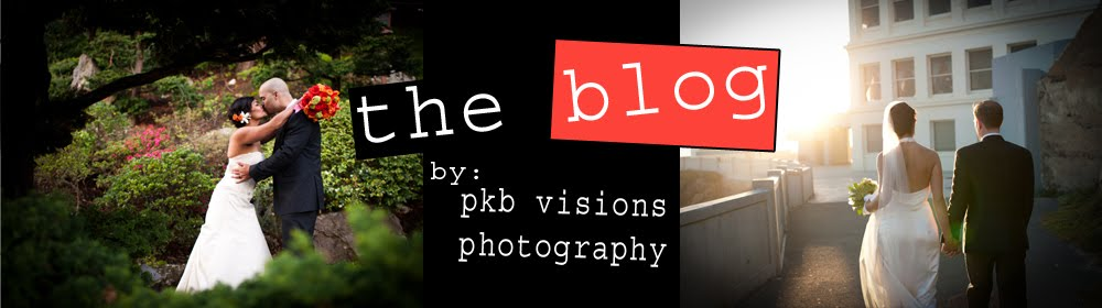 PKB Visions