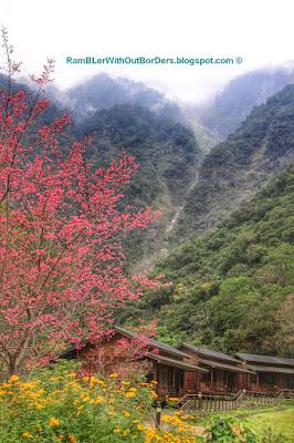 Cabins, Leader Village, Taroko National Park, Taiwan