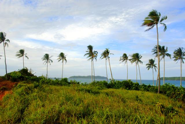 Hill at Nacpan Calitang Twin Beach El Nido
