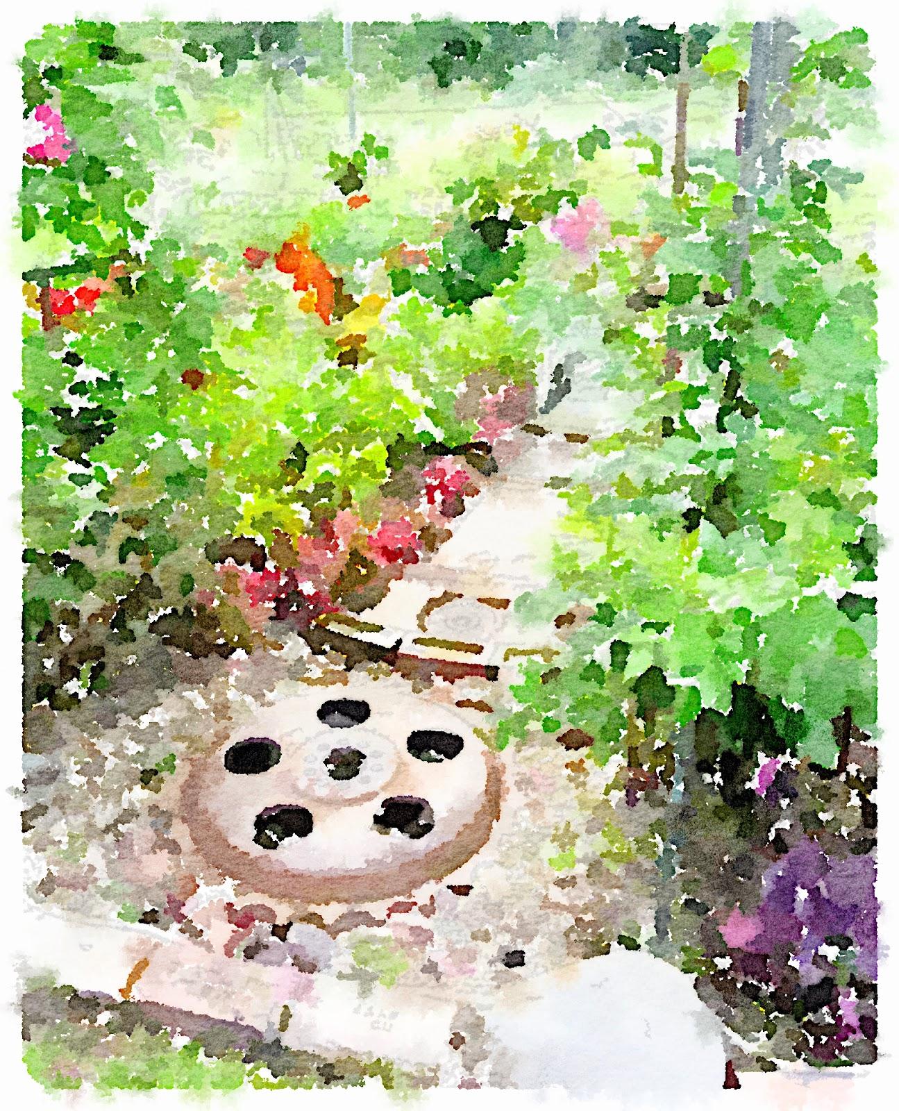 Waterlogue Junky Garden Pathway www.organizedclutterqueen.blogspot.com