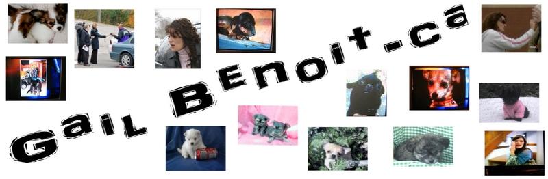 Gail Benoit - Dog Broker in Nova Scotia