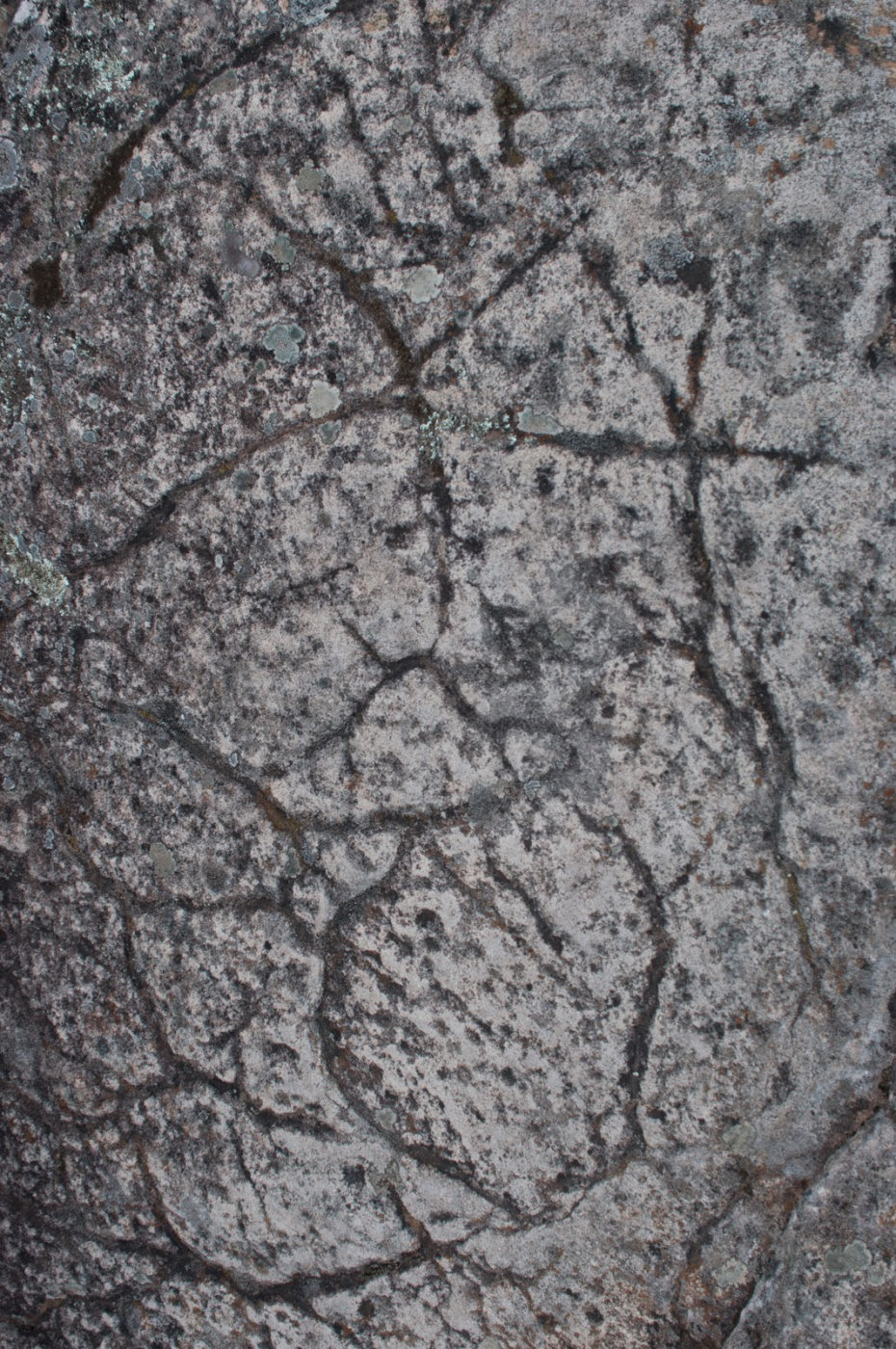 Grampians, sandstone, northern Grampians, Tim Macauley, Timothy Macauley, geology, abstract, abstraction, graphic, graphical, ground, floor, texture, rock, you won't see this at MoMA, victoria, Australia,