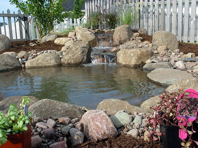 El jardinero plantas y flores c mo hacer un estanque en for Estanques para agua precios