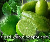 cara-pengobatan-tradisional-membuat-obat-batuk-herbal