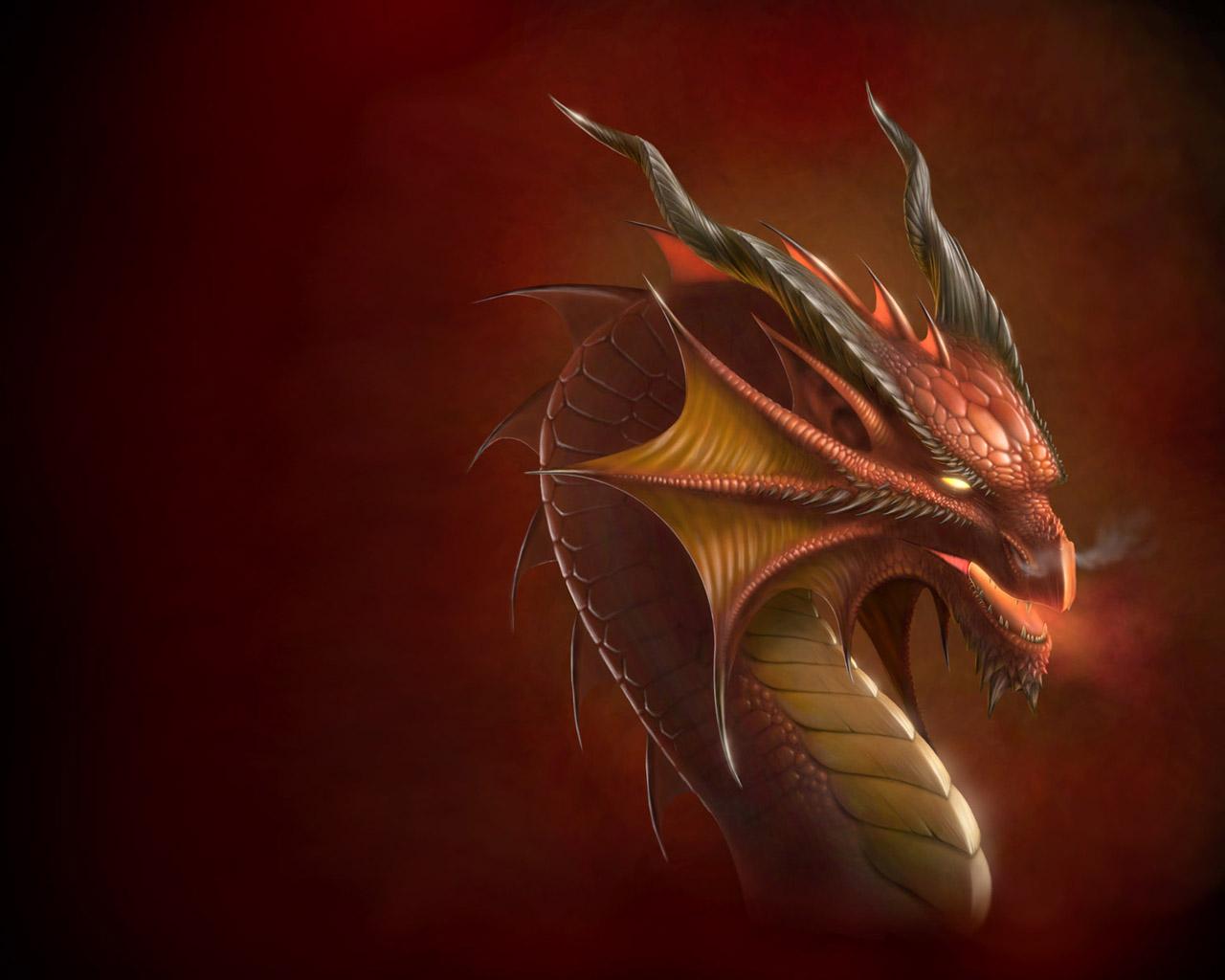 uneedallinside: dragon wallpapers | dragon hd wallpapers | dragon