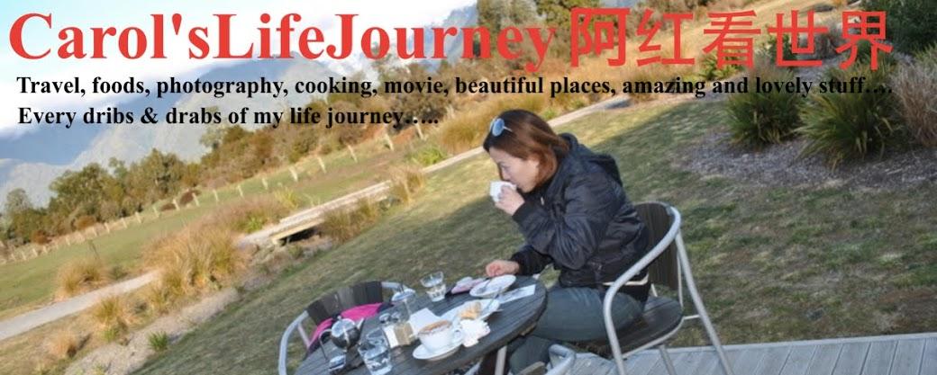 Carol's Life Journey 阿红看世界