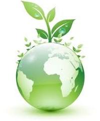 Pengertian Lingkungan hidup