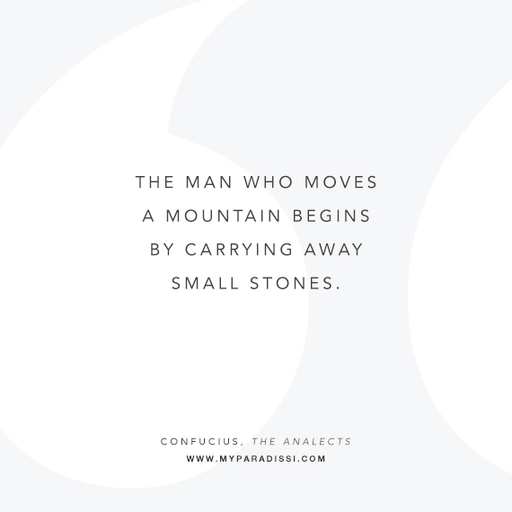 'The man who moves a mountain begins by carrying away small stones.' ~Confucius