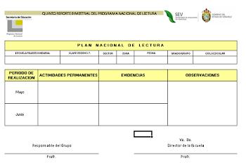 FORMATO PNL 2010-2011